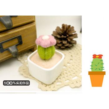 Набор для валяния Кактус с цветком в керамическом горшочке