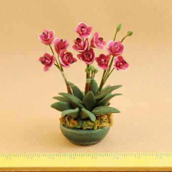 Орхидеи в керамическом горшочке для кукольного дома